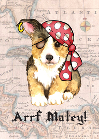 Pirate corgi-magnet